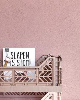 Voorleesboekje  |  Slapen is stom!